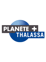 PLANETETHALASSA